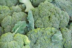 Verdura orgánica en el mercado de los granjeros Foto de archivo
