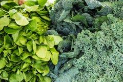 Verdura orgánica en el mercado de los granjeros Imagen de archivo