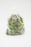 Verdura orgánica verde en el fondo blanco Imágenes de archivo libres de regalías
