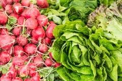 Verdura organica al mercato degli agricoltori Immagini Stock Libere da Diritti