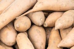 Verdura organica al mercato degli agricoltori fotografia stock libera da diritti