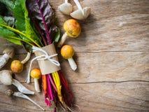 Verdura organica e fungo della bietola svizzera dell'arcobaleno sulla linguetta di legno Fotografia Stock