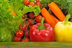 Verdura organica fresca Fotografia Stock Libera da Diritti