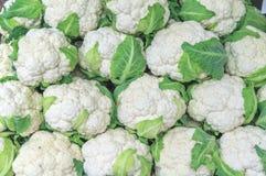 Verdura organica verde e bianca del cavolfiore sano fresco Fotografie Stock Libere da Diritti