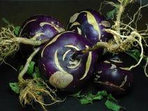 Verdura púrpura del colinabo en pizarra gris Imagenes de archivo