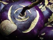 Verdura porpora del cavolo rapa Fotografie Stock Libere da Diritti