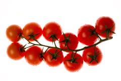 Verdura rossa del pomodoro con il taglio isolato su fondo bianco Fotografia Stock