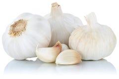 Verdura sana della spezia dei chiodi di garofano del chiodo di garofano di aglio isolata su bianco Fotografie Stock