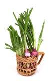 Verdura verde dello scalogno Fotografie Stock