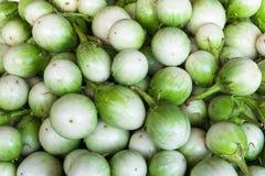 Verdura verde tailandese della melanzana Fotografia Stock Libera da Diritti