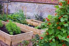Verdura y jardín de flores rústicos del país con las camas aumentadas Imagen de archivo libre de regalías