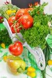 Verduras Imagenes de archivo