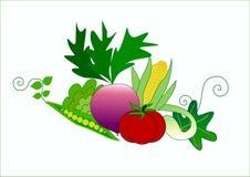 Verduras libre illustration