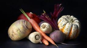 Verduras, aún vida en un fondo negro Imágenes de archivo libres de regalías