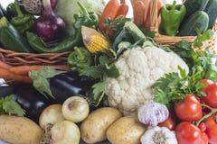 Verduras aisladas en un fondo blanco Imagen de archivo libre de regalías