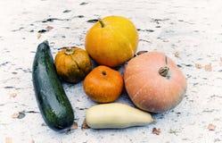 Verduras, calabaza, calabacín Fotos de archivo