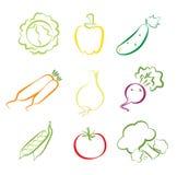 Verduras clasificadas Foto de archivo