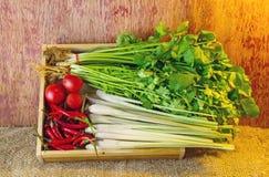 Verduras clasificadas en la caja de madera en de madera rústico oscuro y el saco s Imágenes de archivo libres de regalías
