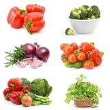 Verduras - collage imagen de archivo libre de regalías