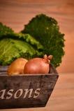 Verduras coloridas col, coliflor, bróculi, patata, cebolla en la tabla de madera Fotografía de archivo libre de regalías