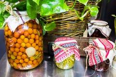 Verduras conservadas en tarros Foto de archivo libre de regalías