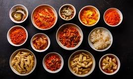 Verduras conservadas en vinagre comida coreana y ensaladas calientes fotos de archivo