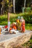 Verduras conservadas en vinagre y frescas en la tabla Fotografía de archivo libre de regalías