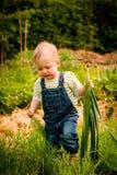 Verduras crecientes - bebé con los puerros Fotografía de archivo