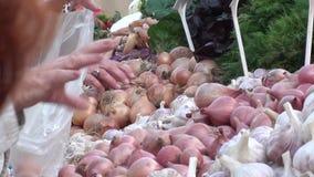 Verduras de compra en el mercado del granjero almacen de metraje de vídeo