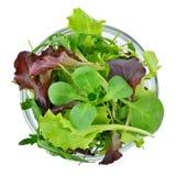 Verduras de hoja mezcladas frescas de los verdes en el cuenco aislado, visión superior Fotografía de archivo