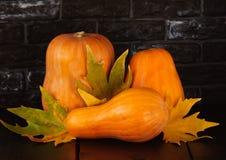 Verduras de la cosecha del otoño Fotografía de archivo