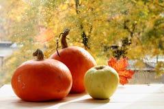 Verduras de la cosecha del otoño en la tabla Foto de archivo