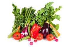 Verduras de la primavera imagen de archivo