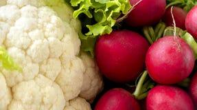 Verduras de la primavera - coliflor y rábano Imagen de archivo