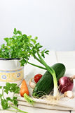 Verduras de la primavera Imágenes de archivo libres de regalías