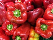 Verduras de las pimientas rojas Imagen de archivo libre de regalías