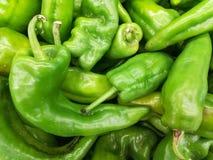 Verduras de las pimientas verdes Imagen de archivo libre de regalías