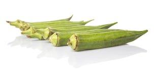 Verduras de los fingeres del quingombó o de las señoras IX Imagen de archivo libre de regalías