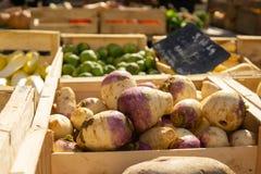 Verduras de raíz en la exhibición en el mercado de los granjeros imagenes de archivo