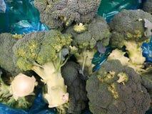 Verduras del bróculi Imágenes de archivo libres de regalías