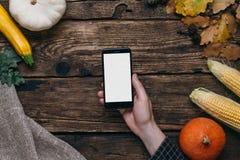 Verduras del otoño: teléfono móvil con la pantalla vacía blanca en mano, calabazas y maíz de los hombres s en un fondo de madera imagen de archivo