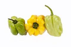 Verduras del pequeño habanero amarillo y verde de la pimienta de chile Imagenes de archivo