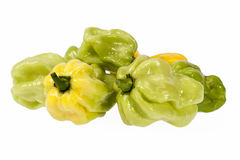 Verduras del pequeño habanero amarillo y verde de la pimienta de chile en el fondo blanco Fotografía de archivo