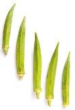 Verduras del quingombó IV Imagen de archivo libre de regalías