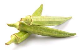 Verduras del quingombó VI Imagen de archivo libre de regalías