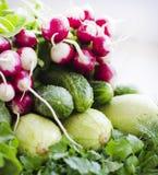 Verduras del surtido de la primavera Imagenes de archivo