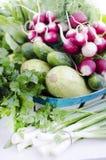 Verduras del surtido de la primavera en la cesta Fotografía de archivo libre de regalías