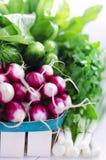 Verduras del surtido de la primavera en la cesta Fotos de archivo libres de regalías
