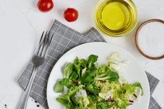 Verduras del tomate de la pimienta del aceite del Arugula de la col de la ensalada de los bistros Imágenes de archivo libres de regalías