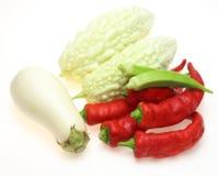 Verduras del verano Fotos de archivo